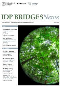 IDP BRIDGES_Newsletter_No 6 2017