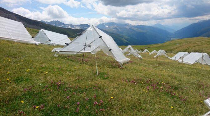 Die ökologischen und ökonomischen Konsequenzen des Klimawandels in den Alpen