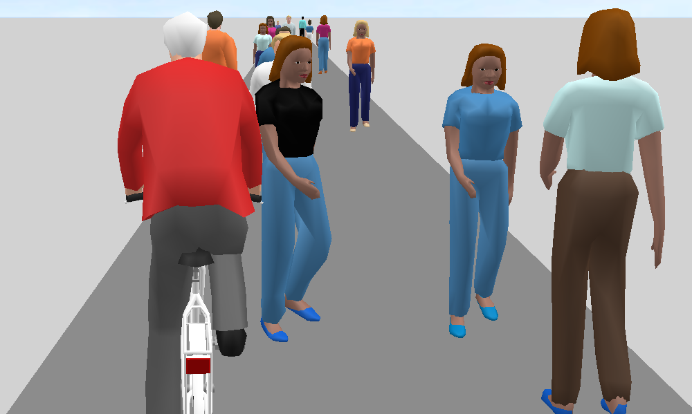 Figure 5: Scenario 4 with bicycles simulated as pedestrians (3D perspective of a cyclist)