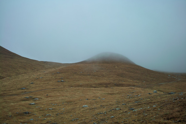 Auf der Alp da Munt