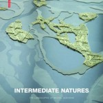 Intermediate-Natures-Desvigne-Michel-9783764377144