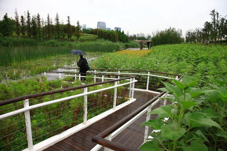 beautiful-walkway-near-the-river