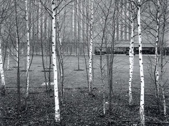 Urban-Nature3