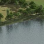 grass bank