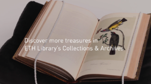 Discover_more_treasures