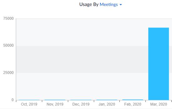 Zoom Meetings der letzten Monate