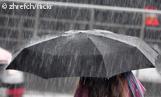 Regenschirm_zhrefch_161x97